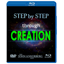 Image of Step by Step Through Creation Download Series