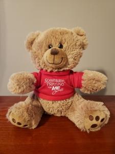 Image of Prayer Bear