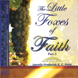 Image of The Little Foxes of Faith Pt 3