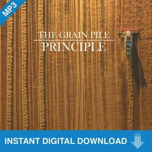 Image of The Grain Pile Principle, 4 Part Download
