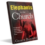 Image of Elephants in the Church Book