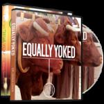 Image of Equally Yoked Bundle