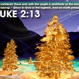 Image of Luke 2:13 - Merry Christmas