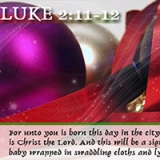 Image of Luke 2:11-12 - Merry Christmas