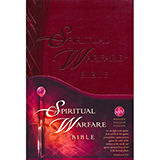 Image of Spiritual Warfare Bible