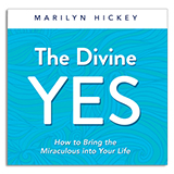 Image of The Divine Yes TV Offer CD