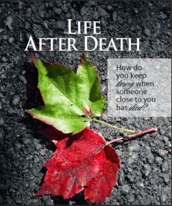 Image of Life After Death: How Do You Keep Living When Someone Close To You Has Died? - DVD By Bishop Long