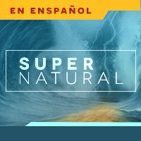 Image of Supernatural DVD Series Plus Download Card Espanol