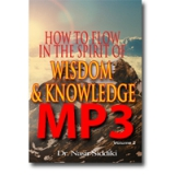 Image of MP3 How to Flow in the Spirit of Wisdom and Knowledge Vol 2