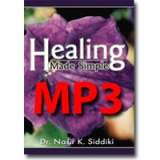 Image of MP3 Healing Made Simple